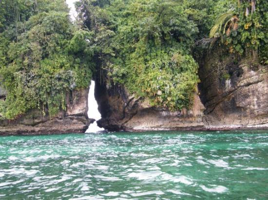Bocas Town, ปานามา: Swan's Cay (island with rare birds)