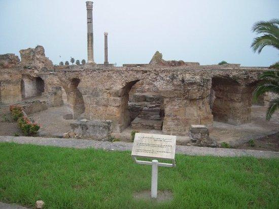 Carthage Tours