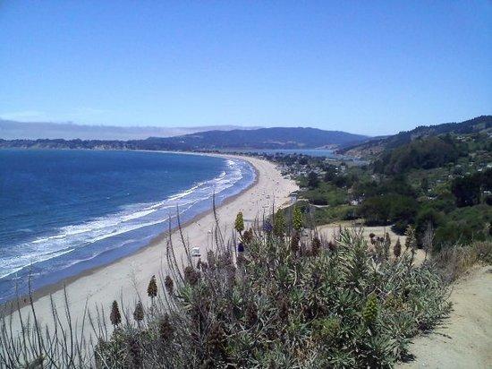 โซโนมา, แคลิฟอร์เนีย: Sonoma, CA, United States  Stinton Beach, Ca