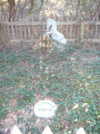 Ocracoke, NC: Ikey D. and his master, Sam Jones are really buried here.