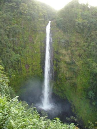 Hilo, HI: Akaka Falls, Hawaii