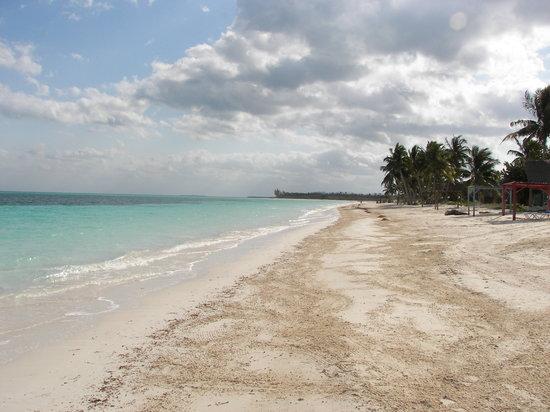 Hotel Cayo Levisa: spiaggi