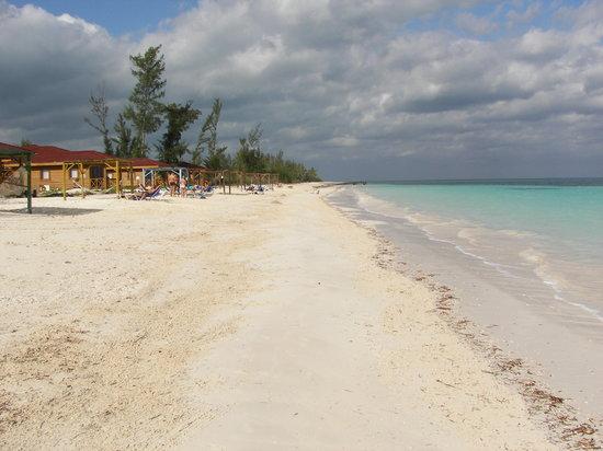 Hotel Cayo Levisa: spiaggia