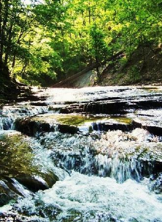 Warsaw, NY: Oatka Creek