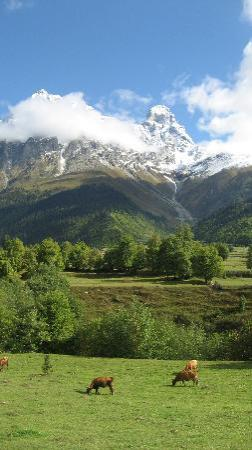 Upper Svaneti, Georgia: Mt. Ushba seen from Tvebishi