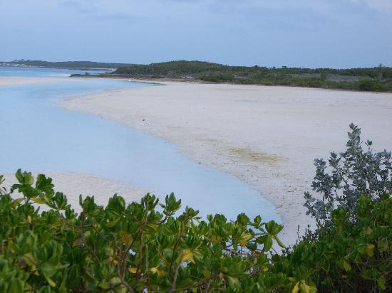 ‪‪Sampson Cay Club‬: Low Tide Sand Flats‬