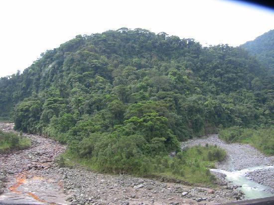 Parque Nacional Braulio Carrillo : Muddy river