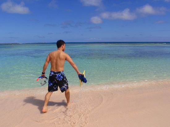 Pineapple Beach Club Antigua - All Inclusive: Gettin ready to snorkle hotel beach