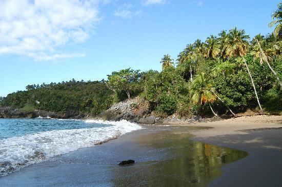 Hotel Las Ballenas Escondidas: notre petite plage