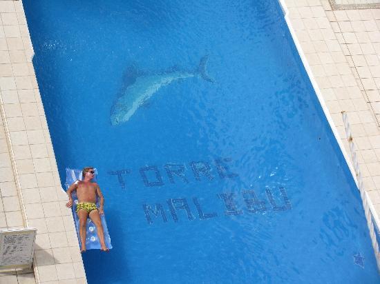Boana Torre Malibu: Piscine de l'hotel