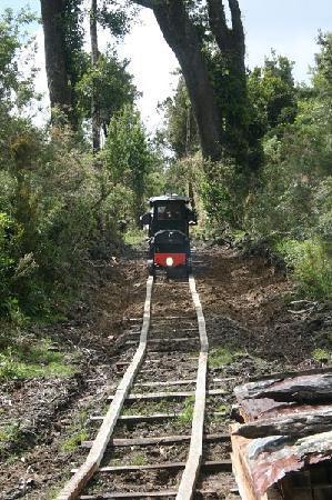 Chepu, Chile: tren de madera en el bosque