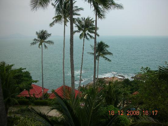 Hi Coral Cove Bungalow : view from balcony