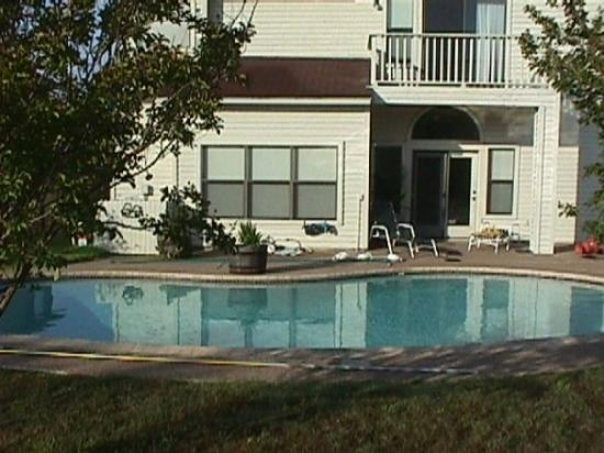 Santa Rosa, CA: Pool and back the the houise