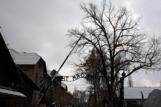 Auschwitz-Birkenau Statsmuseum: Hard work brings freedom!!!