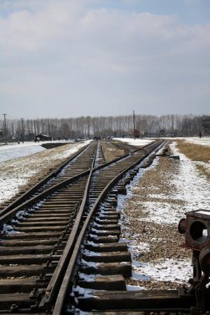 Auschwitz-Birkenau Statsmuseum: This was the unloading bay