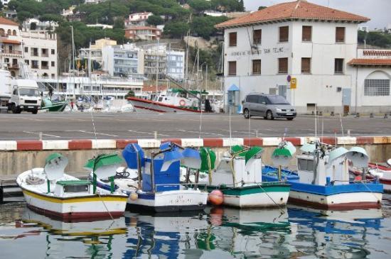 Arenys de Mar ภาพถ่าย