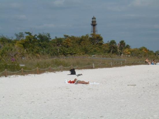 Fishing picture of cape coral southwest gulf coast for Cape coral fishing report