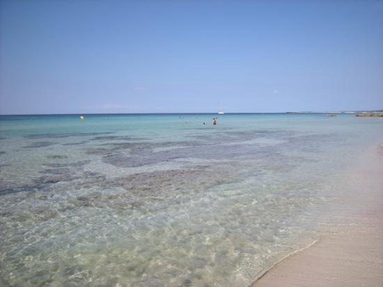 Cala Galdana, España: Spiaggia di Son Bou