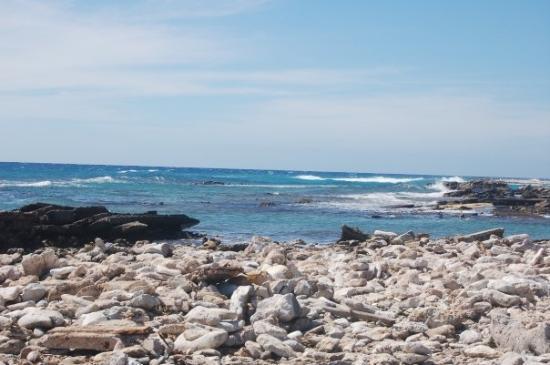 Foto de Palm/Eagle Beach