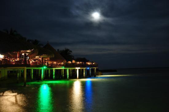 Eriyadu Island Resort: Bar at night