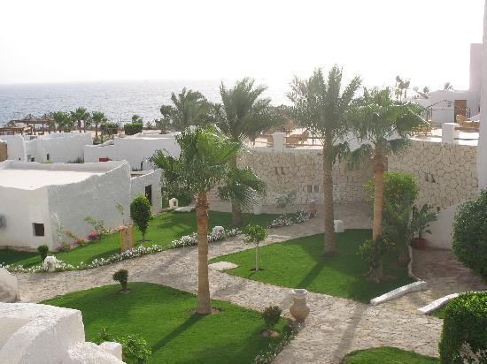 Sharm Club Resort: dalla camera