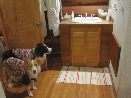 Auberge Meson: 洗面台は2つもありました!