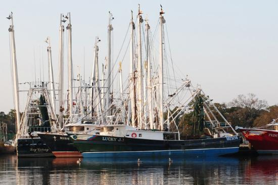 Shrimp boats picture of bayou la batre alabama for Commercial fishing boats for sale gulf coast