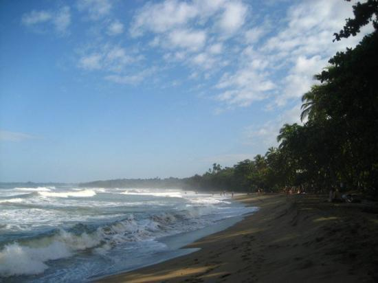 Puerto Viejo, Costa Rica: an afternoon swim on playa cocles!