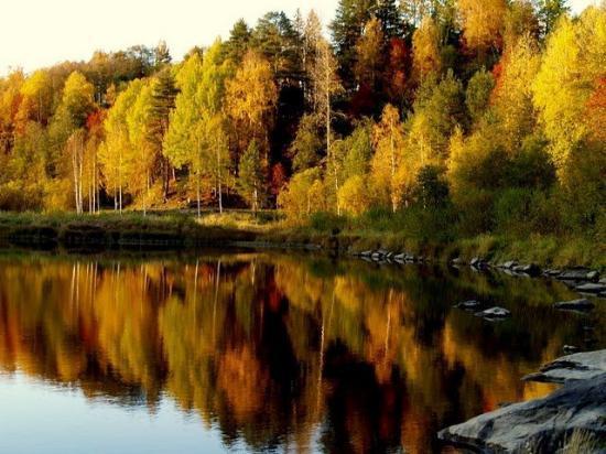Umeå, السويد: Umea, Sweden