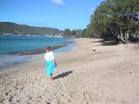 Lower Bay Beach: Rose  on lowerbay beach in Bequia