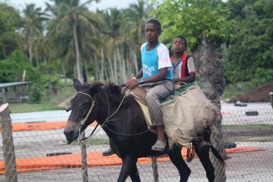 Punta Cana Mike's Private Dominican Adventure: Mode of transportation