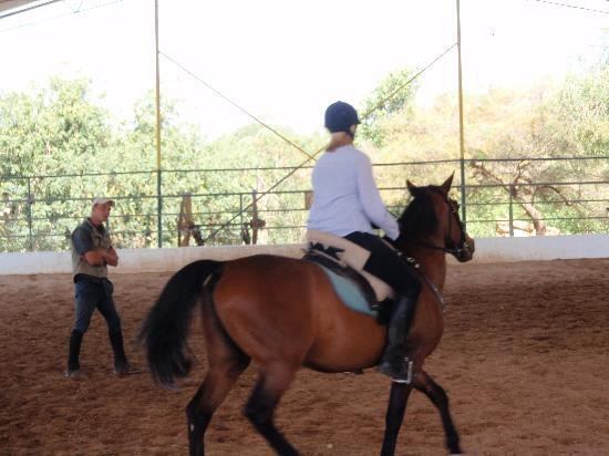 Vale de Ferro Riding Centre and Hotel: Lesson program
