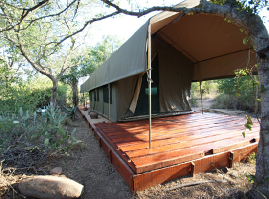 Calao Tented Camp: luxury tent