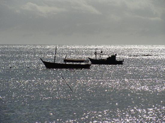 Pousada do Baiano: vista desde la posada