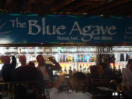 The Blue Agave: Great Times
