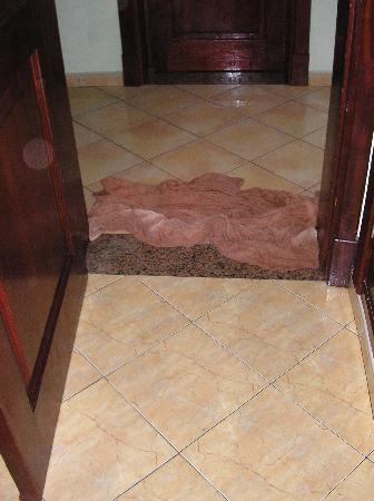 ClubHotel Riu Bachata: Towel Dam  -Room #408