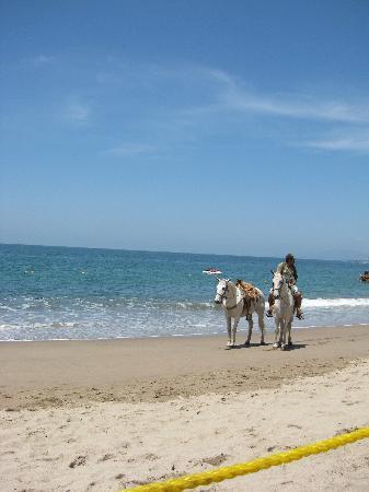 Villas Vallarta by Canto del Sol : horseriding on beach