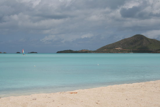 Cades Bay, Antigua : the nest