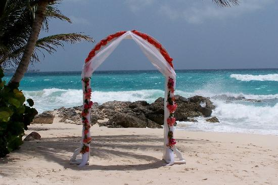Turtle Beach By Elegant Hotels Updated 2018 Prices Reviews Photos Barbados All Inclusive Resort Tripadvisor