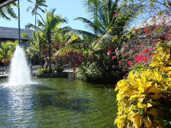 Foto de iberostar b varo suites b varo el paraiso for El paraiso de las alfombras