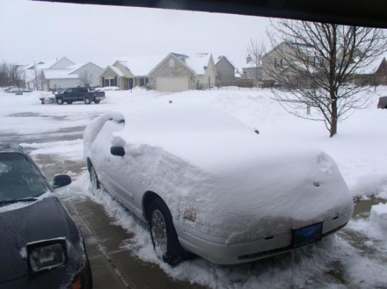 Greenwood, IN: Here is my Crown Vic.  You can see the dept of the snow on the hood.