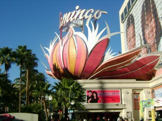 Flamingo Las Vegas Hotel & Casino: Our abode for the week.