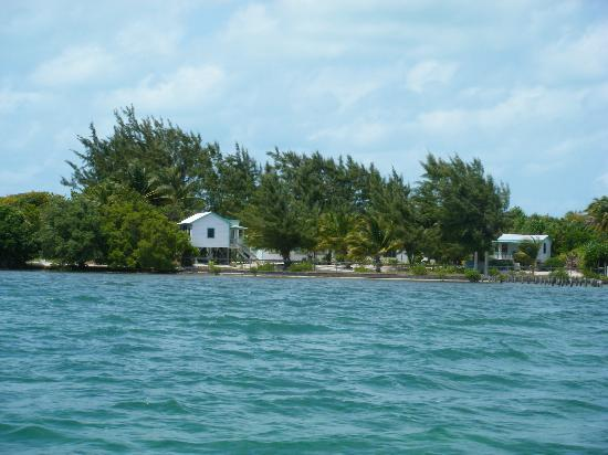 Shirley's Guest House : From the water taxi