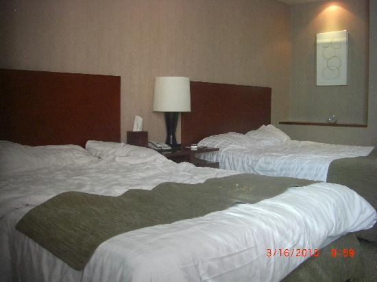 Metro Hotel: room