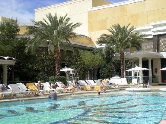 Encore At Wynn  Las Vegas: Encore Pool