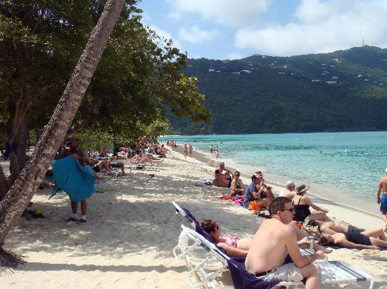Magens Bay: Beach front at Magan's Bay
