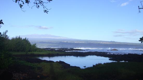 Hilo Tropical Gardens : I took this photo from a private beach right behind tropical gardens