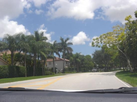Kendall, FL: My way to school. Mi camino a la U.