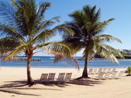 Ali lahko vidite gole moške na plaži, ki jo lahko vidim - Slika Portorika-3815