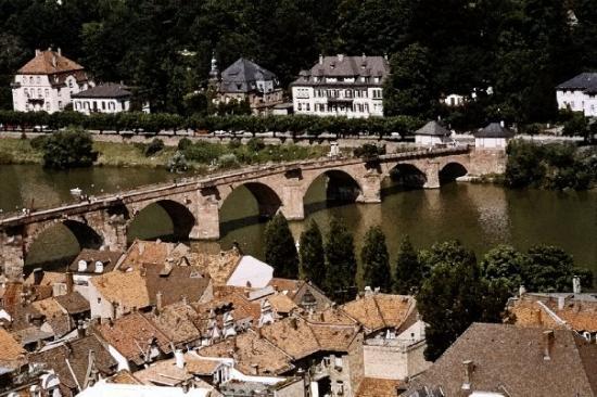 Heidelberg slott: Heidelburg, Germany